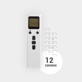Télécommande programmable 12 canaux EMEPRO12AF pour moteur radio-commandé MOTO20REAF